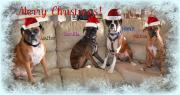 Wishing everyone a wonderful holiday season!