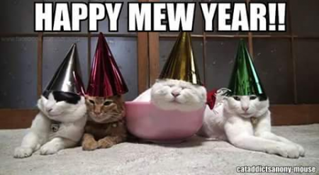 Happy New Year Warriors!