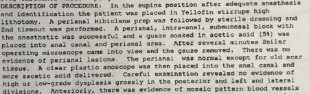 Procedure report first part